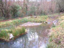 LLP Wildlife Pond Creation 09