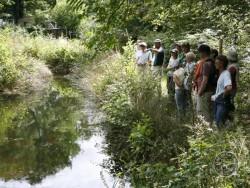 LLP Wildlife Ponds Creation 16