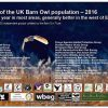 State Of The UK Barn Owl Population 2016 Small