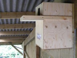 Suitable Positions Barn Owl Indoor Nestboxes 02