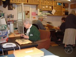 Volunteers In BOT Office