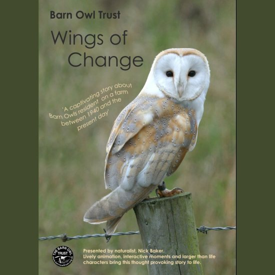 Wings Of Change DVD Front Cover