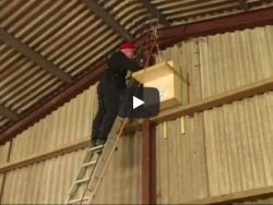 How To Erect Owl Box