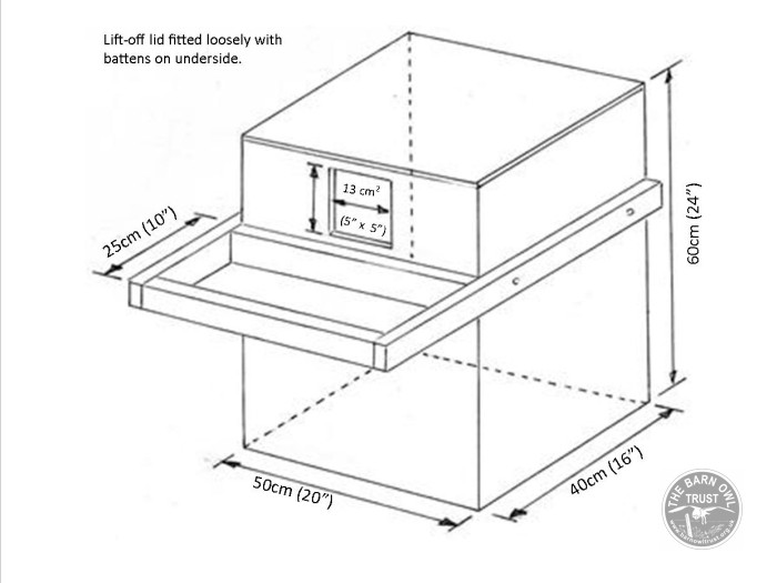 indoor nestbox diagram with dimensions