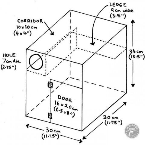 Little Owl Nestbox Diagram