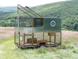 Owl Rescue Rehabilitation Mobile Release Aviary Owl Released
